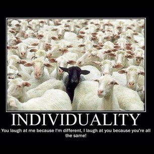 Individuality 